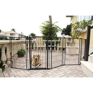 Carlson Grind - Outdoor Super Gate-  X-tra Tall - 366 x 91.4 cm