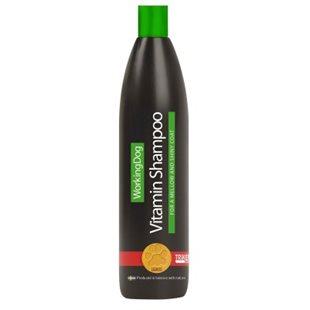 WD B5-Shampoo - 500 ml