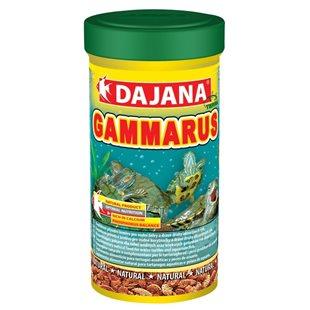 Dajana - Gammarus - 1000 ml