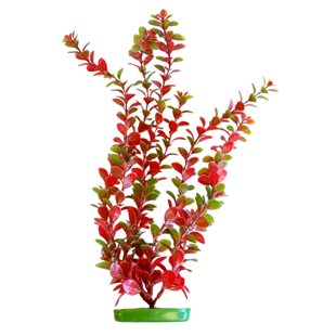 Marina Aquascaper - Red Ludwigia 50 cm