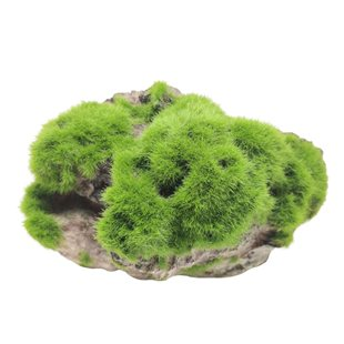 Aqua Della - Moss stone with suction cup  - Large