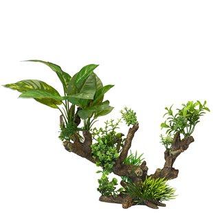 Aqua Della - Florascape 5  - XL