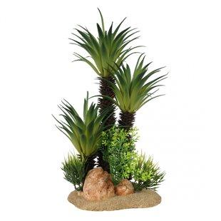 Aqua Della - Sago palm - Large - 30 cm