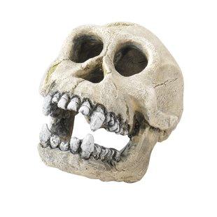 Aqua Della - Chimpanzee - 16 cm