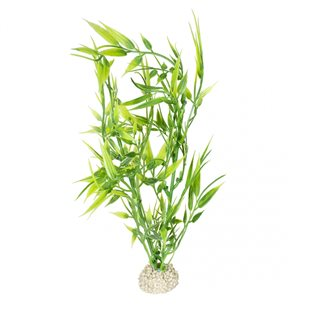 Aqua Della - Bamboo Green - M - 27 cm