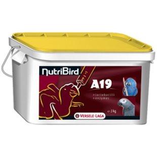 Handuppmatning A19 - 3Kg - 19% Protein - Ara & Grå Jako