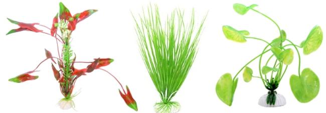 Plastväxter