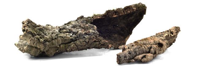 Korkbark för terrarium