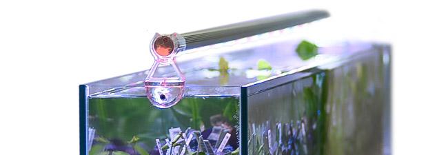 Akvariebelysning