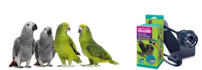 Lysrör och lampor till fåglar