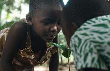 Skänk en femma till Vi-skogens hållbara projekt i Afrika!