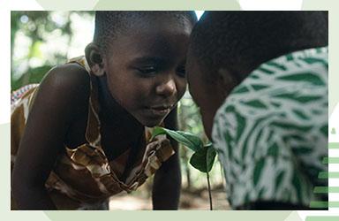 Skänk 20 kr till Vi-skogens hållbara projekt i Afrika!