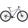 Specialized Rockhopper Comp 29 2X Herr 2020