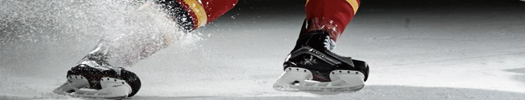 Hockey REA