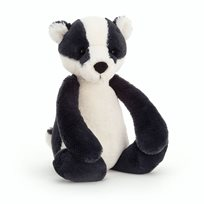 Bashful badger, medium