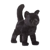 Midnight black cat