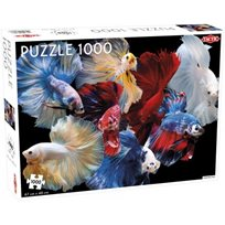 Pussel 1000 Bitar, siamese fighting fish