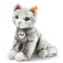 Filou cat, grey tipped