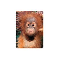Anteckningsbok 3D, orangutangunge
