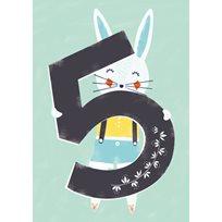 Kanin 5 år