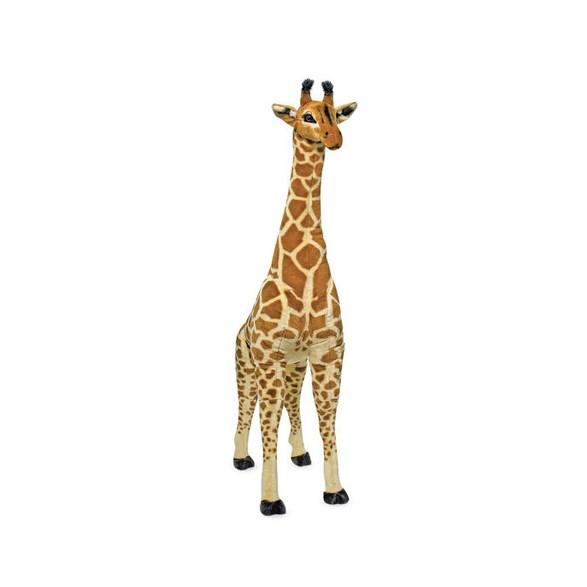 Mjukdjur, Giraff